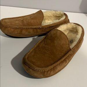 Chestnut Ugg Slippers